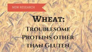 Wheat-nongluten