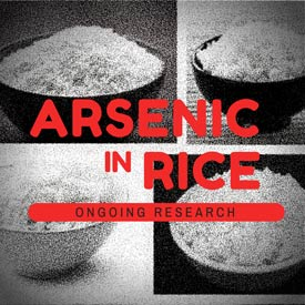ARSENIC-RICE-RESEARCH